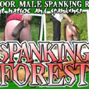 Spanking forest